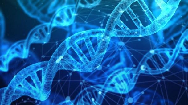 datos en ADN