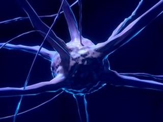 insomnio parkinson enfermedad neurona cerebro terapia genetica