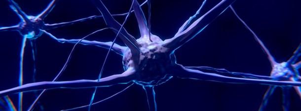 Una terapia genética podría poner fin al Parkinson