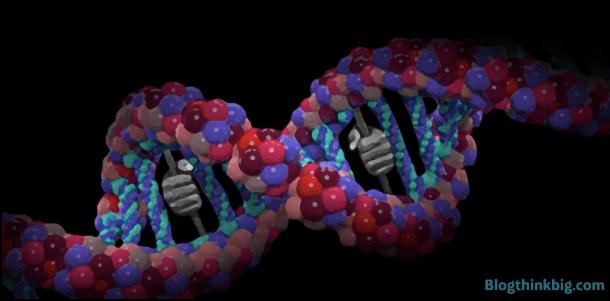 ADN datos Microsoft