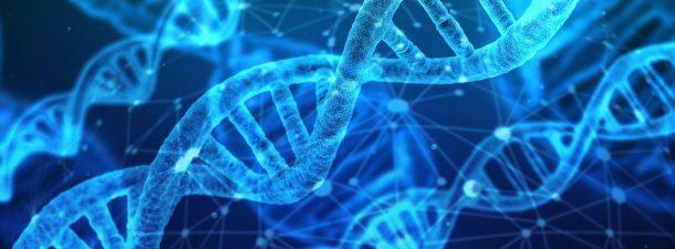 Microsoft crea un sistema automático que almacena datos en el ADN