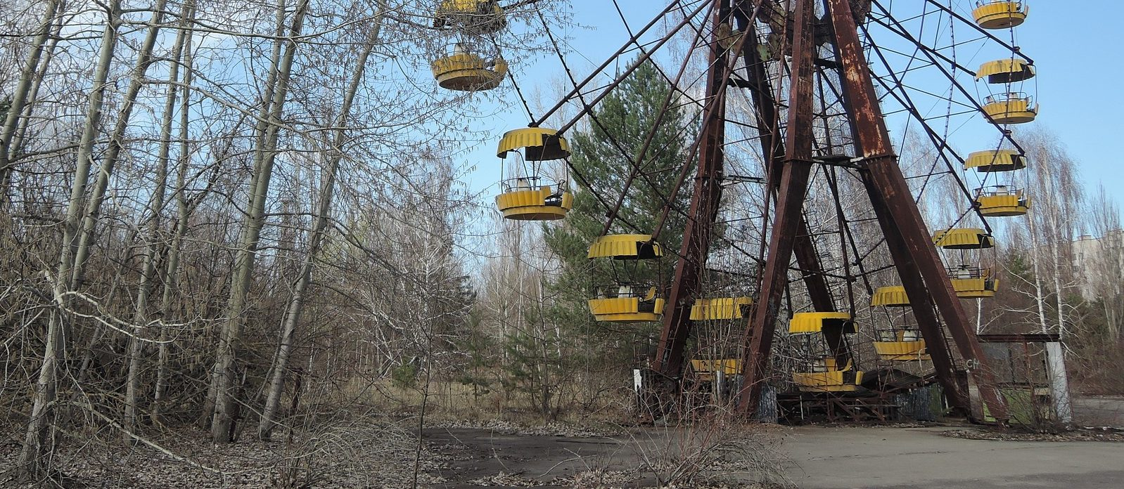 La radiación sigue siendo un factor determinante en el ecosistema de Chernóbil