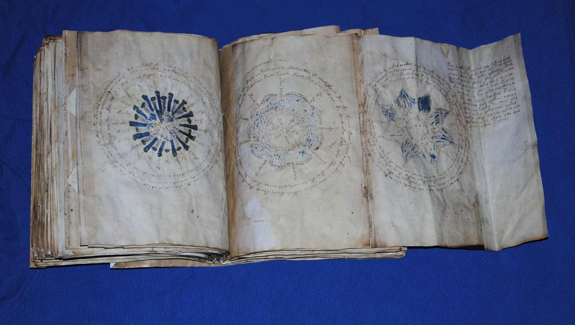 El manuscrito Voynich: el texto medieval que desafía a los mejores criptógrafos