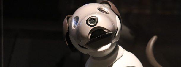 Construye tu propio perro robot de código abierto