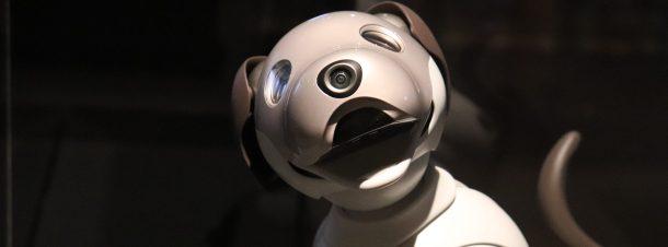 Doggo Perro Robot Stanford