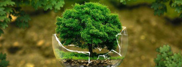 Día Mundial del Medio Ambiente: el peligro de la contaminación en el aire
