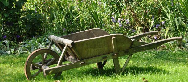 Huerto ecológico Jardín casero Agricultura
