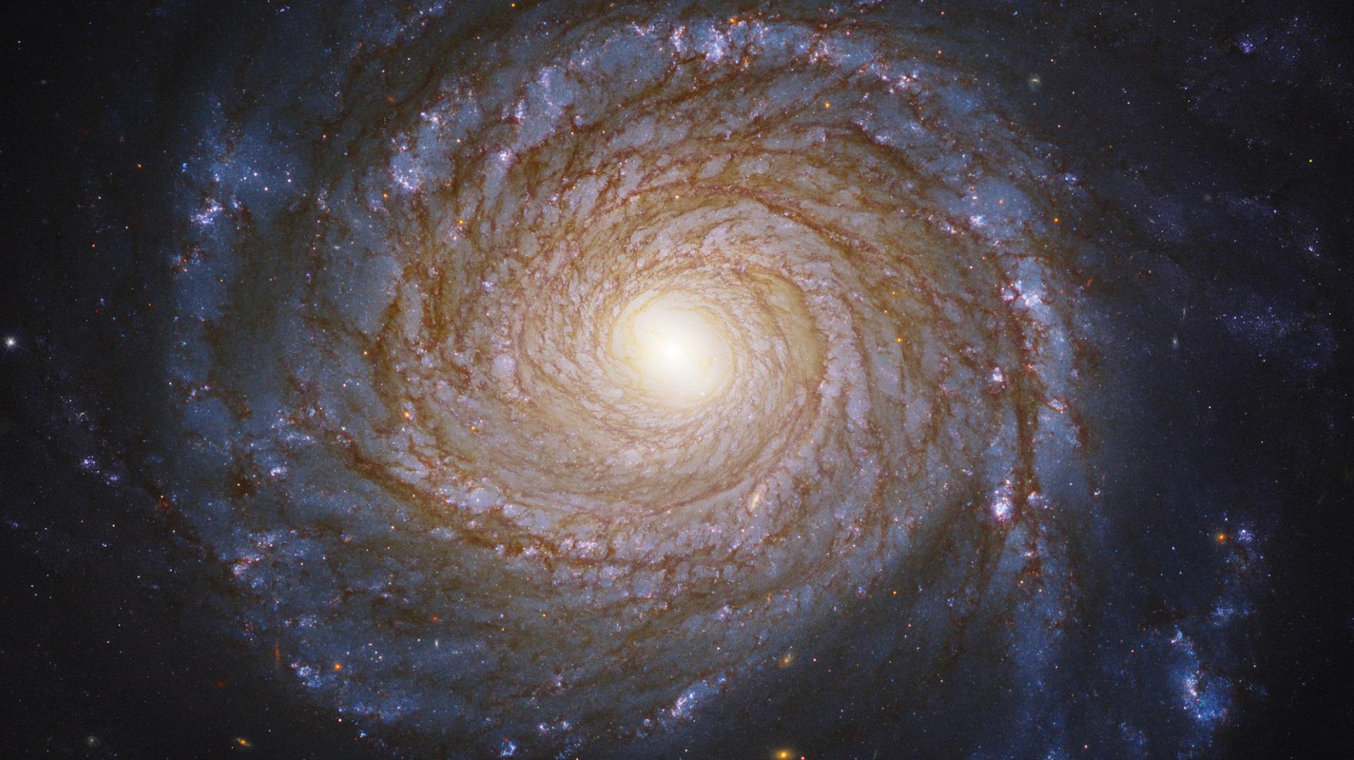 El agujero negro que no debería ser así