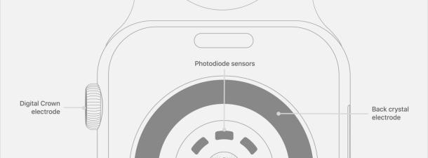 Fotopletismografía, la técnica detrás del éxito de los relojes inteligentes