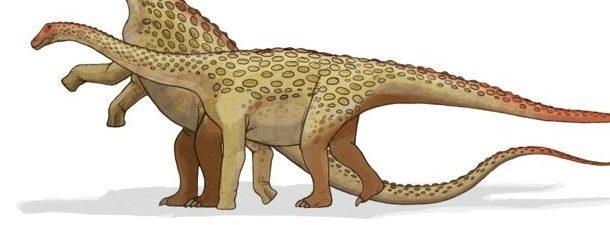 Descubierto un hueso de saurópodo de dos metros en el suroeste de Francia