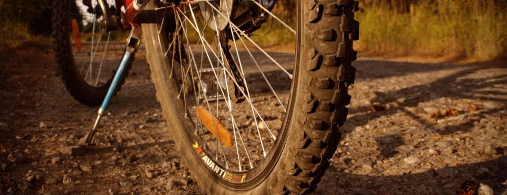 Bicicletas autónomas