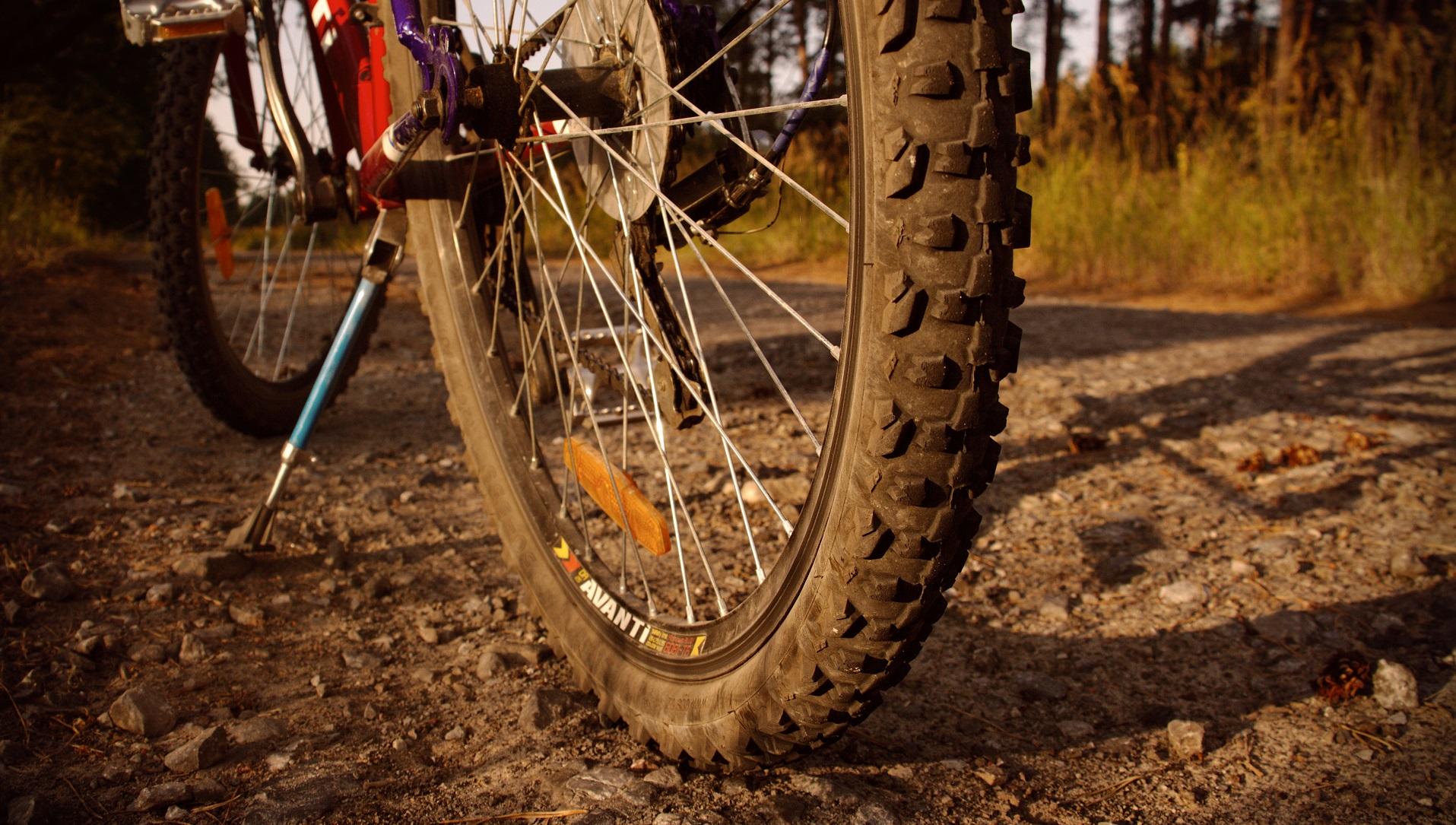 Cómo las bicicletas podrían ser el próximo vehículo autónomo