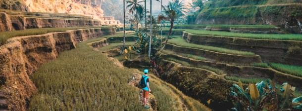 Los nuevos viajeros apuestan por el turismo sostenible y responsable