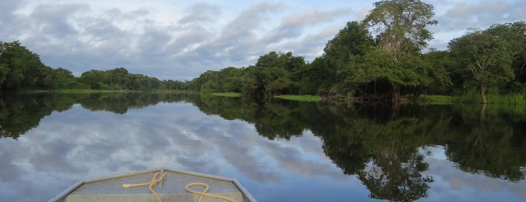 Salud del Amazonas