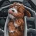 Según la ciencia, los cachorros saben potenciar su ternura