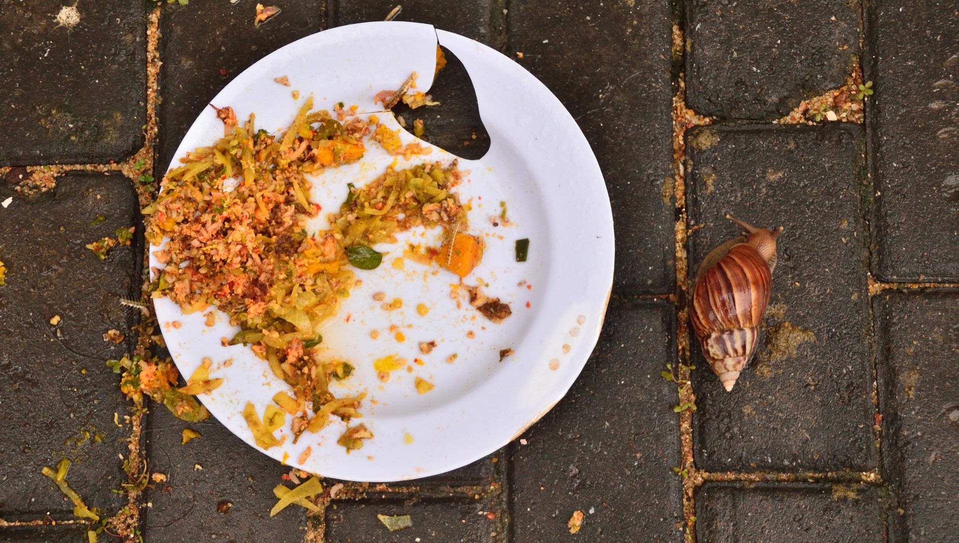 La inteligencia artificial como fórmula para combatir el desperdicio de alimentos