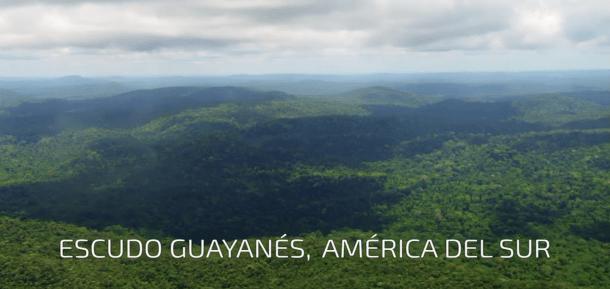 Surinam, Escudo Guayanés