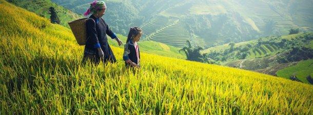 Las mujeres y niñas, principales afectadas por el cambio climático