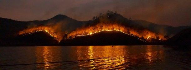 Australia en llamas: ¿cuáles son las consecuencias y la posibles soluciones?
