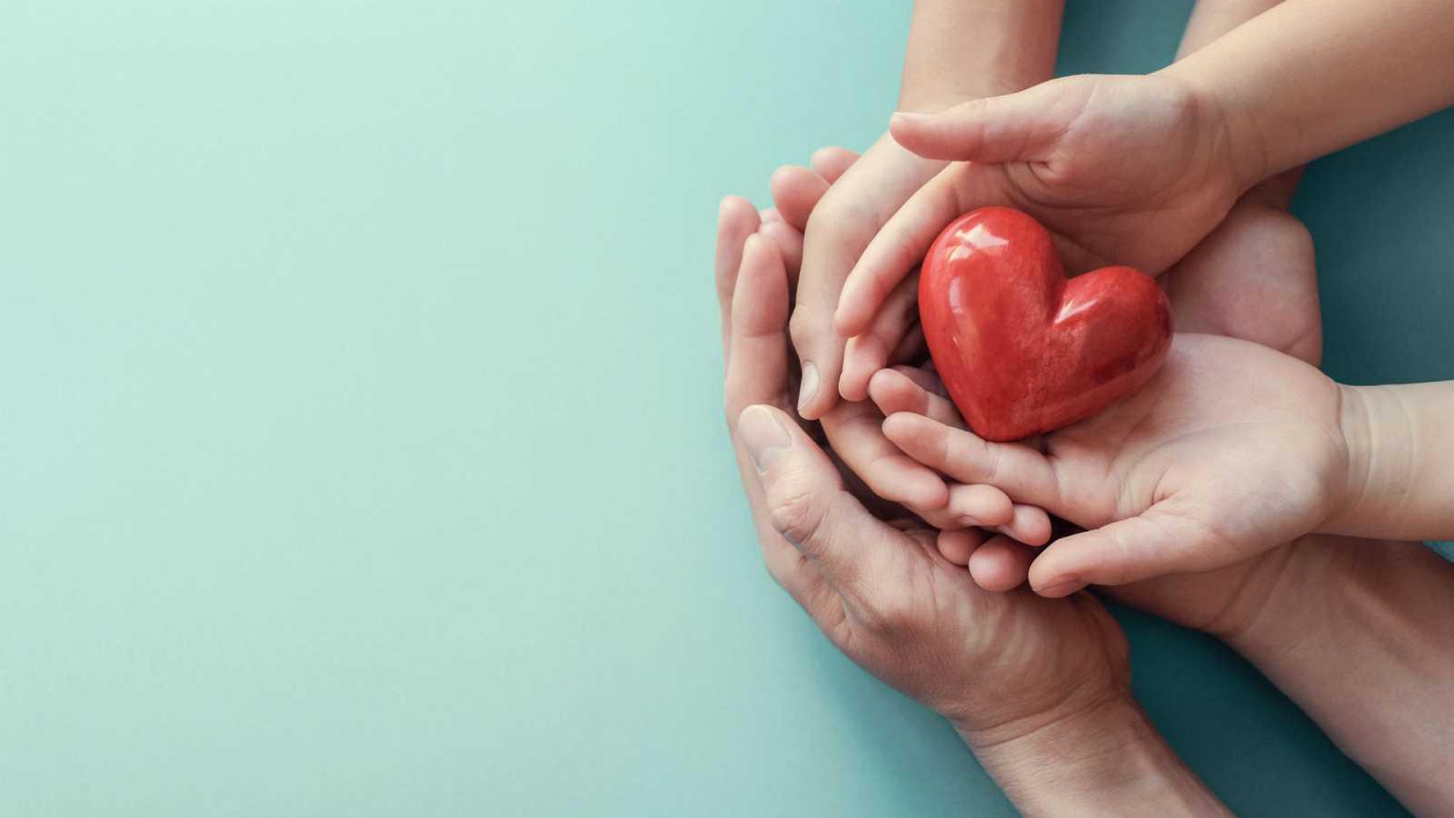 España, a la cabeza en donación y trasplantes de órganos