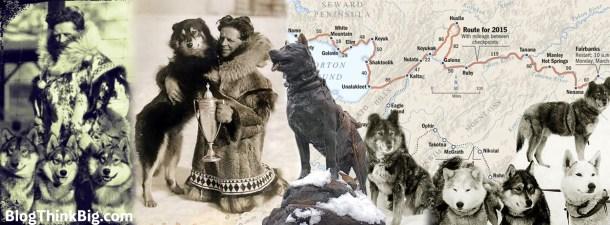 Balto y Togo: perros a la carrera del suero que salvó miles de vidas