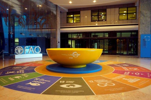 Oficinas de FAO