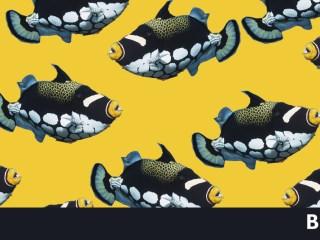 sostenibilidad del oceano