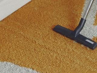 acaros del polvo domestico aspiradora limpieza casa aspirador