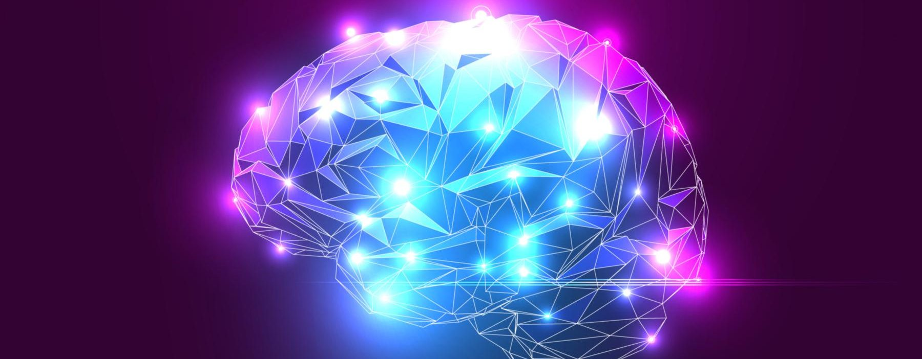 Realidades y mitos sobre el cerebro humano