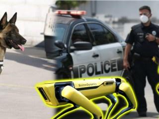 perros robot policía