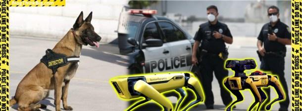 Perros robot, los nuevos acompañantes de la policía de Massachusetts