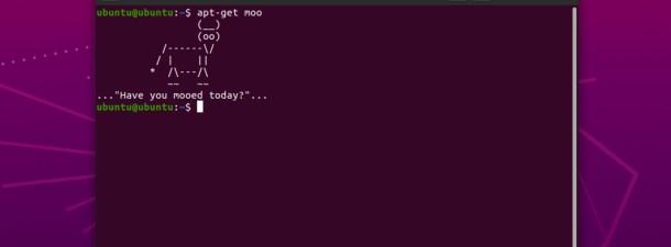 Comandos divertidos para pasar el rato con el Terminal de Linux