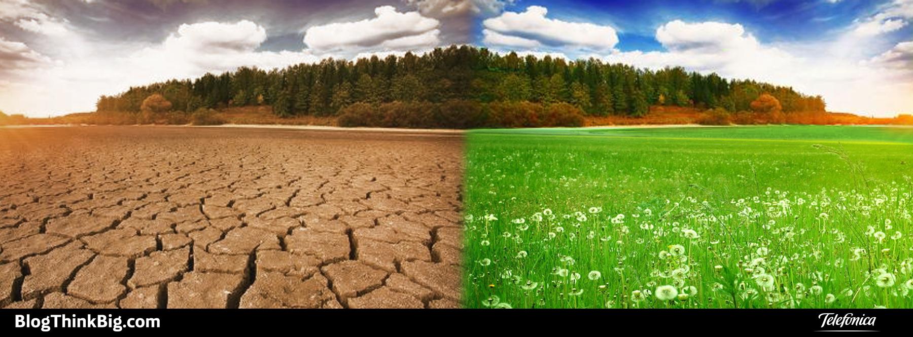 ¿Qué efectos notamos del cambio climático?