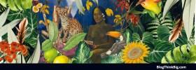 Documentales de naturaleza imprescindibles para disfrutar de nuestro planeta