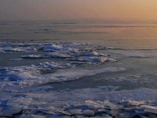Incendios en el ártico, cambio climático