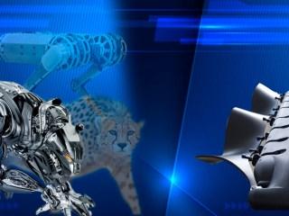 guepardos robots inspiracion