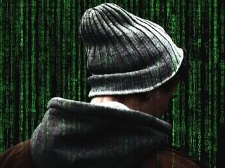 profesional de la ciberseguridad