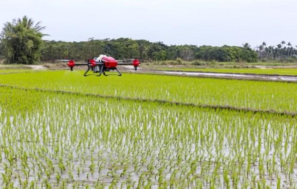 Innovación agrícola