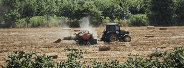 Zonas rurales e Internet: cómo el 5G mejorará la conexión del campo en España
