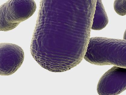 ¿Puede la biología sintética ser open source?