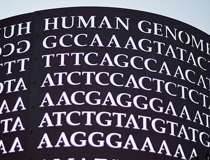 Medicina personalizada: más cerca gracias a la bioinformática